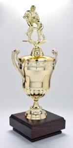 Assembled Trophy
